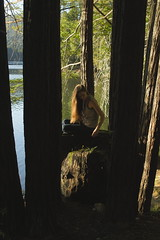(sweet.disposition) Tags: california santacruz sunlight lake nature water beautiful beauty woods pretty quiet peace longhair hike hidden redwoods nymph lochlomond lochlomondlake