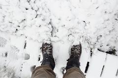 Paul Brandon Overland 2016 (15 of 140) (Paul Brandon  Rambling House Photography) Tags: mountain snow mountains walking nikon rainforest hiking australia tasmania cradle iphone