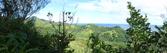 The climb was worth it! (Magryciak) Tags: ocean trip travel blue sea sky panorama plant tree green nature water forest trek landscape outdoors island lumix track view pacific outdoor panasonic adventure explore trail summit tropic cookislands rarotonga tramp islandlife 2015 explored
