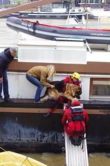 Paris Juin 2016 - 70 Quai des Tuileries, prs de la Passerelle Solfrino, sauver le chien malgr lui (paspog) Tags: rescue dog chien paris france seine flooding flood pniche inondation crue inondations crues