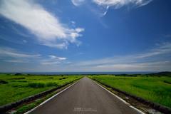 () Tags: sea beach landscape rice farm taiwan    taitung