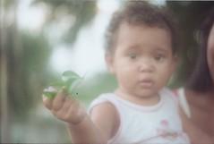 Maria. (larissanunesdealbuquerque) Tags: sunset baby sunlight plant film nature sunshine rio riodejaneiro analog forest vintage lomography woods kodak zenit analogue analogphotography kodakfilm filmphotography zenit12xp analogphotograph filmphotograph