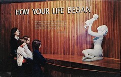 How Your Life Began, Museum Of Science, Boston, Mass. (SwellMap) Tags: architecture vintage advertising design pc 60s fifties postcard suburbia style kitsch retro nostalgia chrome americana 50s roadside googie populuxe sixties babyboomer consumer coldwar midcentury spaceage atomicage