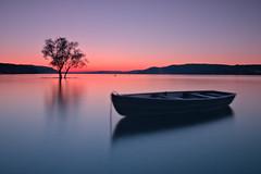 at Klausenhorn (judith.kuhn) Tags: sunset lake tree nature water landscape boot see boat wasser sonnenuntergang dusk natur bodensee landschaft baum abendhimmel abendrot abendlicht lakeconstance