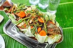 ตะลุยชิมเมนูอาหารปลาที่ร้านเชียงใหม่เรือนแพ 2