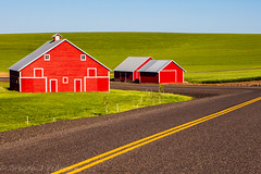 Primary Colors (Culinary Fool) Tags: palouse usa stripe washington crop 2016 farm palousescenicbyway red yellow roadtrip blue barn wa brendajpederson travel curve photography fields culinaryfool green ranch may road travelwa 2470mm28