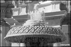 gocciolare (imma.brunetti) Tags: roma capitale acqua pietra fontana bernini gabbiano lazio piazzasanpietro marmo spruzzi schizzi maderno gocciolare