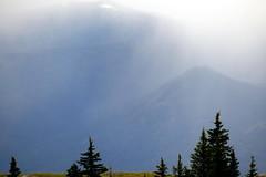 Rain Coming (Dru!) Tags: trees canada mountains rain forest bc britishcolumbia thompson cariboo cachecreek marblecanyon hatcreek cornwallhills oregonjack clearrange centralinterior
