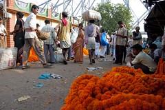 Flower Market, Mullick Ghat (Life in Frozen Frames) Tags: people flower calcutta mullickghat howarhbridge lifeinfrozenframes reemagill tamaghnasarkar