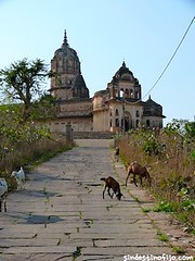 "Palacios de Orchha • <a style=""font-size:0.8em;"" href=""http://www.flickr.com/photos/92957341@N07/8724012007/"" target=""_blank"">View on Flickr</a>"