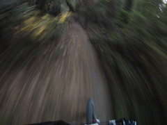 FILE1761 (LazyBoyDays) Tags: california road park santa camera light santacruz motion blur bike speed turn forest point fun bicycling spring sand scottsvalley day open looking view ride floor offroad time sweet pov space cam sandy helmet trails fast off dirty mount dirt trail riding cruz valley cycle mtb mounted daytime felton scotts speeding turning blury foward