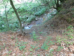 Balkan mountains (Gonrah) Tags: mountains water forest river clean pure balkan