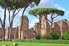 Terme di Caracalla (david.spinnael) Tags: rome roma terme caracalla