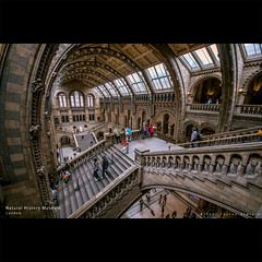Natural History Museum | London [FUJI x-PRO1] (dominikfoto) Tags: london museum architecture fuji britain gothic sigma muse fujifilm british 1020mm naturalhistorymuseum fusina xpro1 fusinadominik