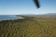 20130506D8E_3396 (cisco42) Tags: ocean trees summer lighthouse canada beach sunshine forest coast bc britishcolumbia shoreline rocky vancouverisland northamerica saltwater canadiancoastguard messerschmittboelkowblohmmbbbo105 lightstation2013