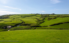 Farmland in Boswinger - Cornwall, England, UK (Paul Diming) Tags: uk greatbritain england landscape spring cornwall unitedkingdom farm farmland cornwallengland boswinger d7000 pauldiming boswingerengland