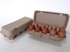 กล่องไข่กระดาษ pulp mold egg box-3