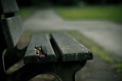 Marode Bank III (Herr Olsen) Tags: bench cemetary bank ramshackle solingen grfrath parkfriedhof