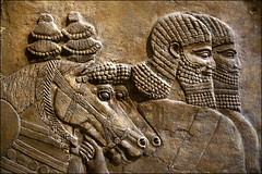 Interior wall, Palace of King Sennacherib, Nineveh, Northern Iraq, Assyrian (laheringer) Tags: england london unitedkingdom carving britishmuseum mesopotamia assyrian kingsennacherib stolenantiquity