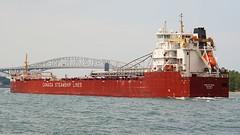 Baie St. Paul (rexp2) Tags: boat flickr ship greatlakes laker freighter stclairriver sonynex5n