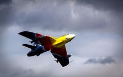 Hawker Hunter Miss Demeanour (Jonny Mckee Photography) Tags: uk summer newcastle airshow planes northernireland mournemountains codown 2013 festivalofflight
