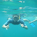 Snorkeling with sea lions, sea turtles and fish - Bolivia and the Galapagos Islands cross-cultural