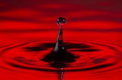 Red drop (Ilkka Hakamäki) Tags: lighting water nikon wave drop droplet setup 28 tamron 90 strobe strobist d7000 yn460ii yn560ii yn560iii macroyongnuo