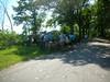 08-26-2012HornPond013