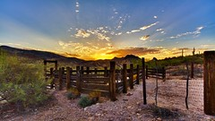 Ranch-Life-Wallpaper (vinod_pednekar) Tags: