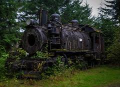 Feral Locomotive (zankoutim) Tags: britishcolumbia september vancouverisland telegraphcove 2013