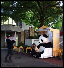 Panda posing (DameBoudicca) Tags: japan zoo tokyo panda ueno  nippon   japon giappone tiergarten nihon tokio   japn uenozoo djurpark giardinozoologico parczoologique  jardnzoolgico onshiuenodbutsuen