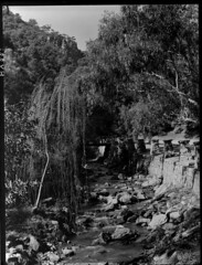 Morialta Falls reserve (State Records SA) Tags: blackandwhite photography australia historical southaustralia frankhurley srsa staterecords staterecordsofsouthaustralia staterecordsofsa