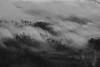 "nebbia ... a Novembre ("" paolo ammannati "") Tags: sky italy panorama mountain me fog alberi forest italia nuvole photographer top natura ombre tuscany toscana 1001nights terra nebbia autunno viaggi montagna biancoenero bosco arezzo foresta paoloammannati effettinaturali"