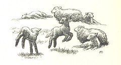 Image taken from page 46 of '[Sing-Song. A nursery rhyme book. ... With ... illustrations by A. Hughes, etc.]'
