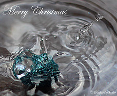 'God Bless Us, Everyone' Tiny Tim, A Christmas Carol (1843), Charles Dickens (richard STOCKER PHOTOGRAPHY) Tags: water glitter bauble cheap