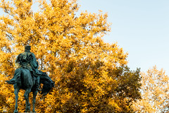 Cabalgando (lvaro Hurtado) Tags: madrid park parque espaa horse tree art monument statue caballo spain arte general monumento rbol estatua retiro martnezcampos d3100