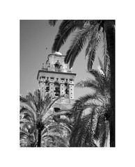 Pearl of the West CXXXV (2 Marvelous 4 Words) Tags: bw tower bells spain andalucia palmtrees cordoba pearlofthewest iglesiaconventualdesanagustin conventchurchofsanaugustin