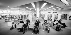 Ple Langues et Littratures (Bibliothque - Les Champs Libres - Rennes) Tags: france brittany library bibliothek champs biblioteca bibliothque rennes libres ples bibliothquedeschampslibres plelanguesetlittratures