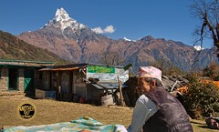HOTEL MACHHAPUCHARE (ANOTHER DAY AT THE OFFICE) Tags: nepal camp people mountain trek landscape low adventure guide shelter machhapuchare machapuchare