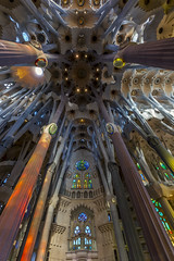 La Sagrada Familia Ceiling (Glenn Shoemake) Tags: barcelona lasagradafamilia canonef1635f28lii
