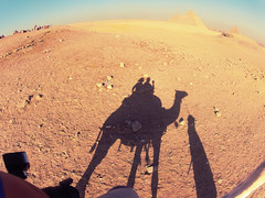fun iii (tetrachromacy) Tags: africa travelling history wow desert northafrica egypt culture unesco cairo trips pyramids society giza gizapyramids travelphotography unescoheritagesite travelphotojournalism