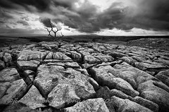 Clints and Grykes (jim ennis) Tags: blackandwhite monochrome landscape scenic dramatic wideangle ero