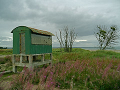 The hut (Eff Bee) Tags: pink autumn light cold colour green beach clouds scotland sand war iron forrest fife hut shore northsea tentsmuir 2013