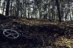 Mal reciclado (mausdearaa) Tags: naturaleza azul nikon bicicleta basura bici monte pontevedra quintela galiciaespaa d7000
