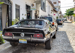 Mustang feeling right at home in Mexico. (Gerald Lau) Tags: black cars mexico jalisco puertovallarta mustang