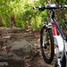 "Velectrix-Ascent-Electric-Mountain-Bike-176 • <a style=""font-size:0.8em;"" href=""http://www.flickr.com/photos/97921711@N04/16294247308/"" target=""_blank"">View on Flickr</a>"