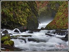 Turbulent Water (MikeJonesPhoto) Tags: oregon veil falls bridal 1114 0166
