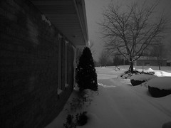 night sight (2) (Ange 29) Tags: trees windows light bw snow canada night king shed olympus safety m walkway pro shrubs zuiko township omd em1 1240mm