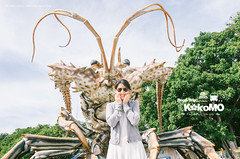 Trip to Kokomo (L.F.Lee) Tags: travel portrait pentax florida sunny roadtrip roadsideattraction islamorada floridakeys hwy1 keylargo  kokomo  scenicbyway sunshinestate scenicdrive  da1650 k5iis