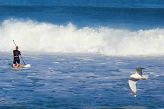 Thu, Feb 12, 2015 - afternoon surfing, 01